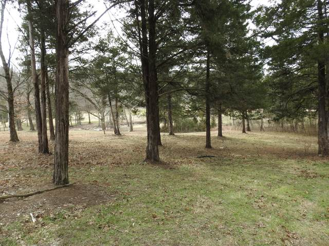Lot 22 Ashwood, Branson West, MO 65737 (MLS #60173820) :: Weichert, REALTORS - Good Life