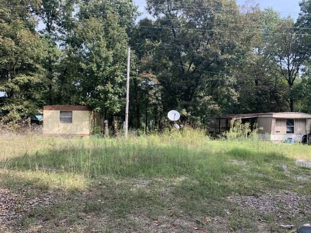 287 State Highway H, Lampe, MO 65681 (MLS #60173879) :: Weichert, REALTORS - Good Life