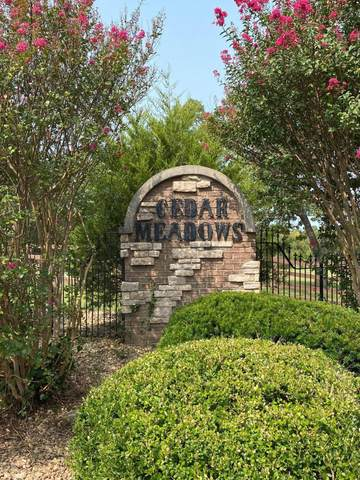 460 Cedar Meadows Lane, Branson, MO 65616 (MLS #60173925) :: Clay & Clay Real Estate Team