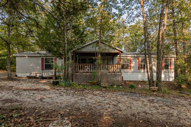 1156 Buena Vista Road, Branson, MO 65616 (MLS #60173997) :: The Real Estate Riders