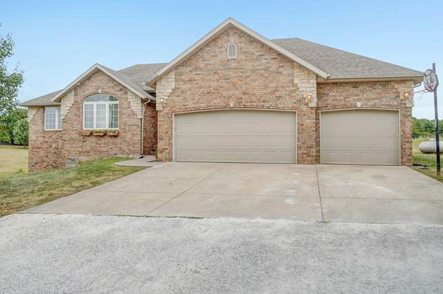 225 Tallgrass Road, Ozark, MO 65721 (MLS #60174016) :: Evan's Group LLC