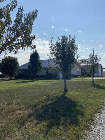 2453 County Road 119, Wasola, MO 65773 (MLS #60174095) :: Team Real Estate - Springfield