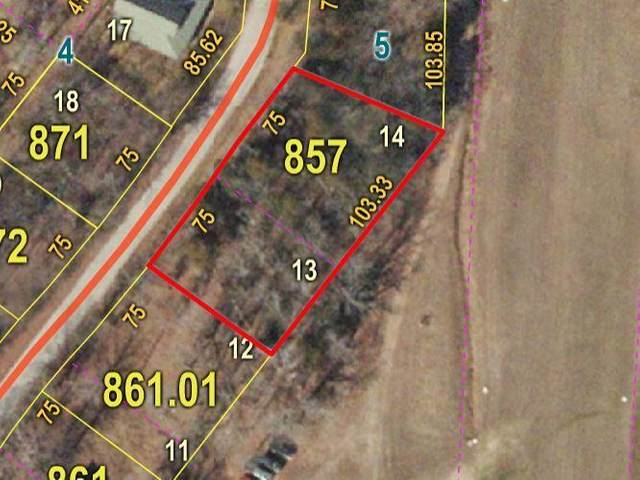 Lot 13, 14 Mittens, Shell Knob, MO 65747 (MLS #60174169) :: Sue Carter Real Estate Group