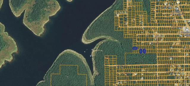 Lot 34 W Tamarack Drive, Diamond City, AR 72644 (MLS #60174270) :: Team Real Estate - Springfield
