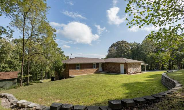 11772 State Hwy. 176, Walnut Shade, MO 65771 (MLS #60174300) :: Team Real Estate - Springfield