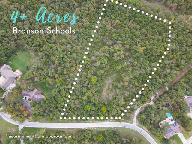424 Meadow Lane, Branson, MO 65616 (MLS #60174474) :: Team Real Estate - Springfield