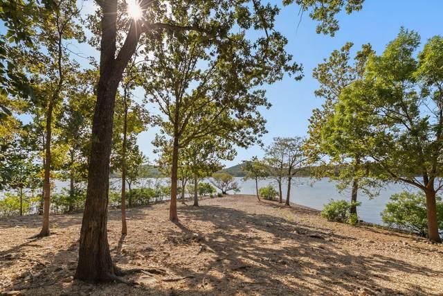 3273 Pioneer Point Road, Galena, MO 65656 (MLS #60174685) :: Winans - Lee Team | Keller Williams Tri-Lakes