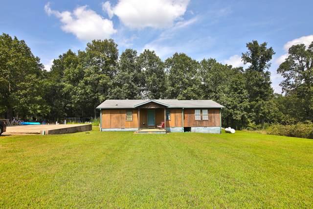 60 Rainbow Trl Trail, Hardy, AR 72542 (MLS #60174699) :: United Country Real Estate