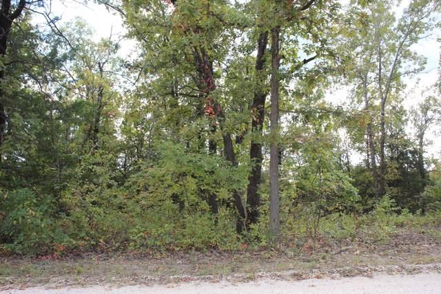 00000 County Road 205 Loop, Wheatland, MO 65779 (MLS #60174782) :: The Real Estate Riders