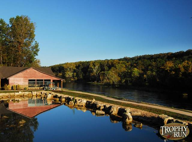 18 Rocking Chair Loop, Branson, MO 65616 (MLS #60174785) :: Winans - Lee Team | Keller Williams Tri-Lakes