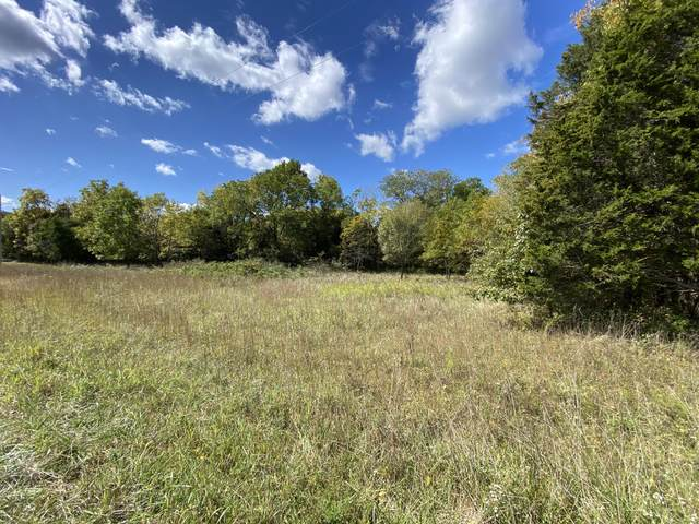 Lot 4 Drop Tine Drive, Strafford, MO 65757 (MLS #60174821) :: The Real Estate Riders