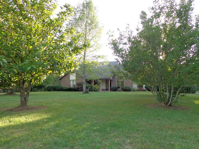 3382 Liberty Road, Rogersville, MO 65742 (MLS #60174855) :: The Real Estate Riders