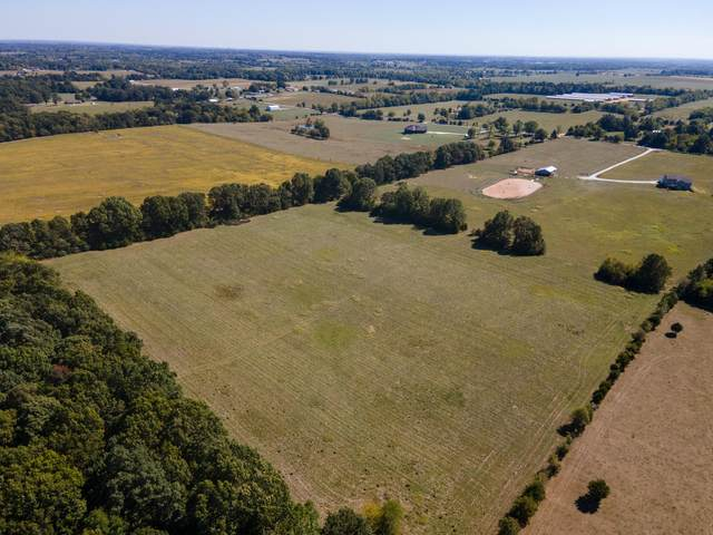 Tract 3a Wise Hill Road, Billings, MO 65610 (MLS #60174947) :: The Real Estate Riders