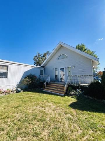 6074 N 6080 State Highway 125, Rogersville, MO 65742 (MLS #60175097) :: Team Real Estate - Springfield
