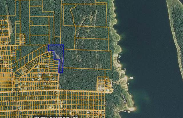 000a Locust, Diamond City, MO 72644 (MLS #60175143) :: Team Real Estate - Springfield