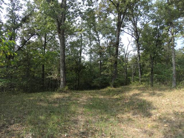 Lot 4 Daisy Lane, Lampe, MO 65681 (MLS #60175254) :: Clay & Clay Real Estate Team