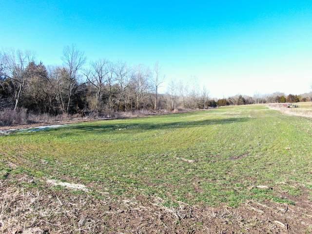000 E 480th Road Lot #7, Bolivar, MO 65613 (MLS #60175415) :: Team Real Estate - Springfield