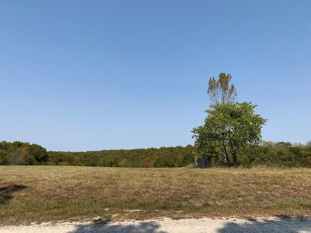 Lot 77 Rivermeade Ranch Loop, Galena, MO 65656 (MLS #60175688) :: Tucker Real Estate Group | EXP Realty