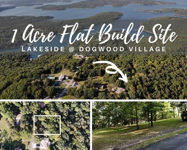 Lot 6 White Dove Lane, Lampe, MO 65681 (MLS #60175806) :: Clay & Clay Real Estate Team