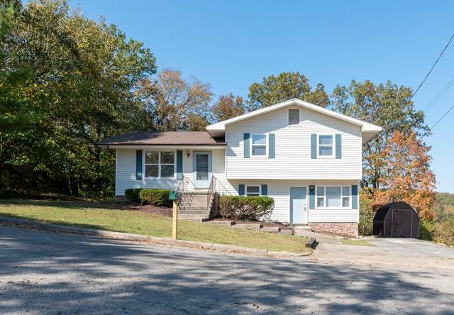1505 Todd Drive, Branson, MO 65616 (MLS #60175989) :: Team Real Estate - Springfield