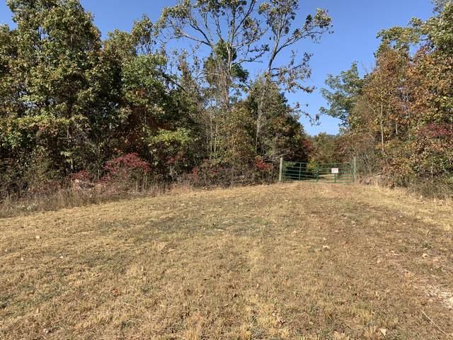 Tbd Dogwood Loop Tract 16, Ava, MO 65608 (MLS #60176199) :: Clay & Clay Real Estate Team