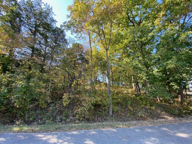 Lot 7/6 Cherokee Drive, Kimberling City, MO 65686 (MLS #60176211) :: Sue Carter Real Estate Group
