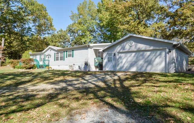210 Castle Rock Drive, Kissee Mills, MO 65680 (MLS #60176295) :: Evan's Group LLC