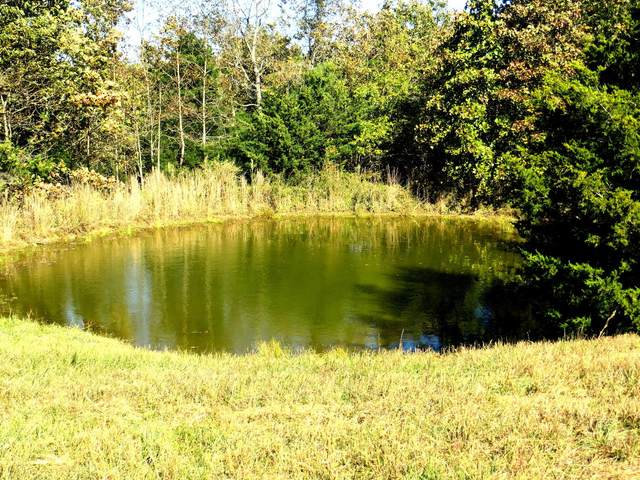 001 Co Rd 220, Thayer, MO 65791 (MLS #60176495) :: Clay & Clay Real Estate Team
