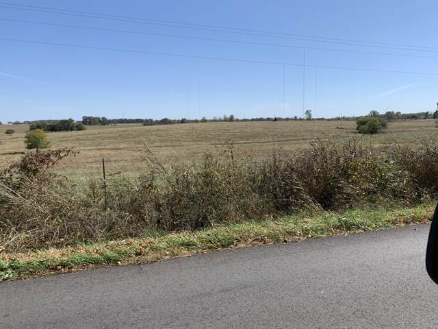 T B D Selmore Road Road Tract 6, Ozark, MO 65721 (MLS #60176555) :: Winans - Lee Team | Keller Williams Tri-Lakes