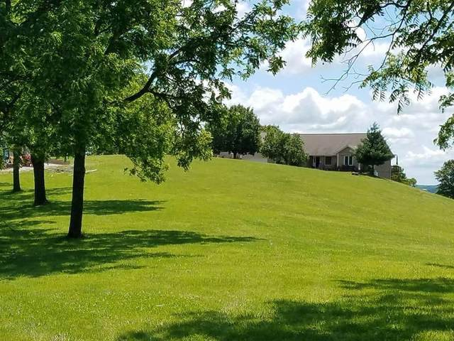 10620 W State Highway 76, Cape Fair, MO 65624 (MLS #60176656) :: Evan's Group LLC