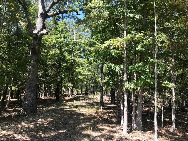 000 S Highway 95, Mountain Grove, MO 65711 (MLS #60176721) :: Team Real Estate - Springfield