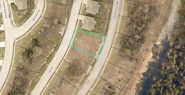121 Jury Lane, Branson, MO 65616 (MLS #60176754) :: United Country Real Estate