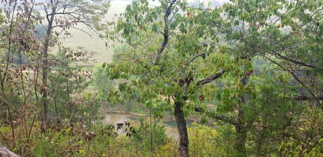 000 Camp Clark Hill, Galena, MO 65656 (MLS #60176983) :: Clay & Clay Real Estate Team
