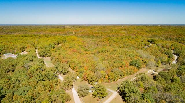 29 Outback Lane, Reeds Spring, MO 65737 (MLS #60176987) :: Clay & Clay Real Estate Team