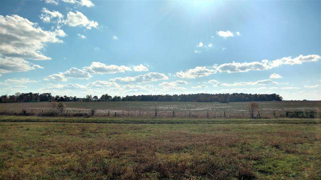 000 State Hwy K, Clever, MO 65631 (MLS #60177045) :: Sue Carter Real Estate Group