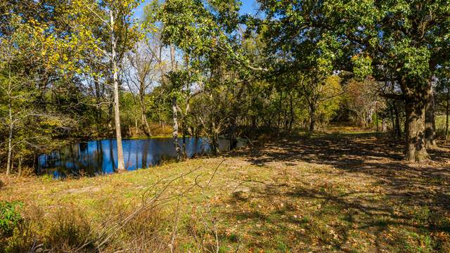 Tbd Highway 160, Highlandville, MO 65669 (MLS #60177123) :: Sue Carter Real Estate Group
