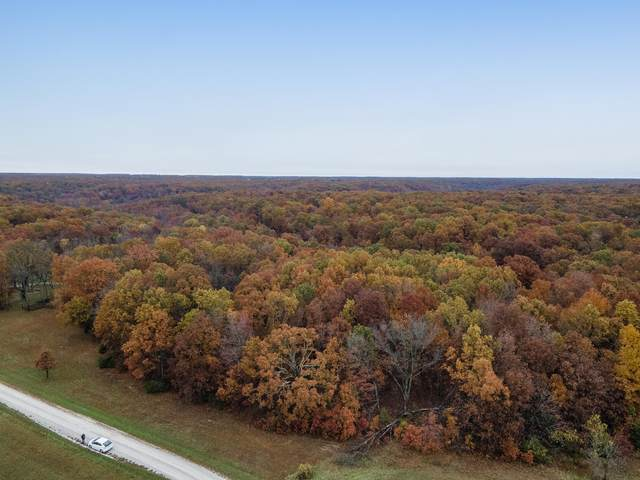 Tbd Ranch Drive, Rogersville, MO 65742 (MLS #60177149) :: Clay & Clay Real Estate Team