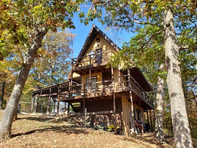 504 Virgin Bluff Drive, Galena, MO 65656 (MLS #60177209) :: The Real Estate Riders
