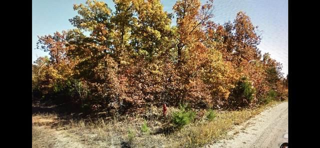 1006 Judge Drive, Horseshoe Bend, AR 72512 (MLS #60177316) :: Sue Carter Real Estate Group