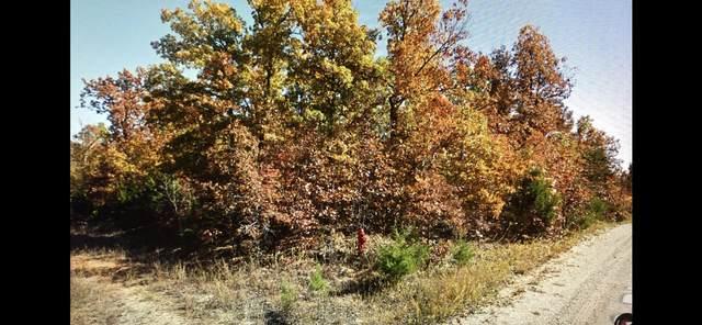 1006 Judge Drive, Horseshoe Bend, AR 72512 (MLS #60177317) :: Evan's Group LLC