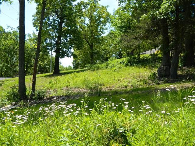 Lot 23 Oak Shadow Drive, Kimberling City, MO 65686 (MLS #60177459) :: Sue Carter Real Estate Group