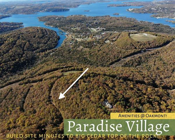 Lot 94 Coach Drive, Hollister, MO 65672 (MLS #60177545) :: United Country Real Estate