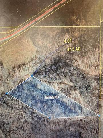 Tbd State Highway 90 - Lot 5, Noel, MO 64854 (MLS #60177660) :: Team Real Estate - Springfield