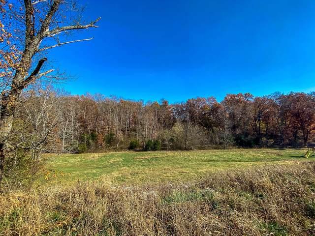 716 Peach Brook Drive, Nixa, MO 65714 (MLS #60177920) :: Tucker Real Estate Group | EXP Realty