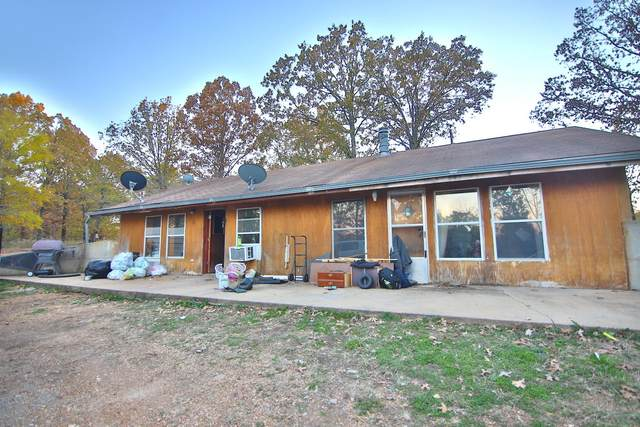 444 Ripley Route P, Gatewood, MO 63942 (MLS #60177952) :: Team Real Estate - Springfield