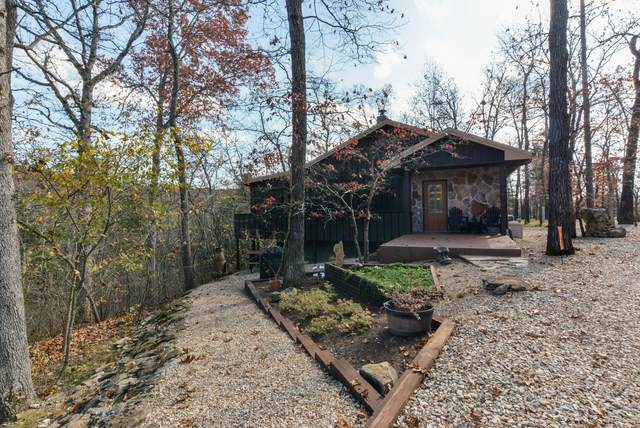 23104 Private Road 1241, Shell Knob, MO 65747 (MLS #60178010) :: Evan's Group LLC
