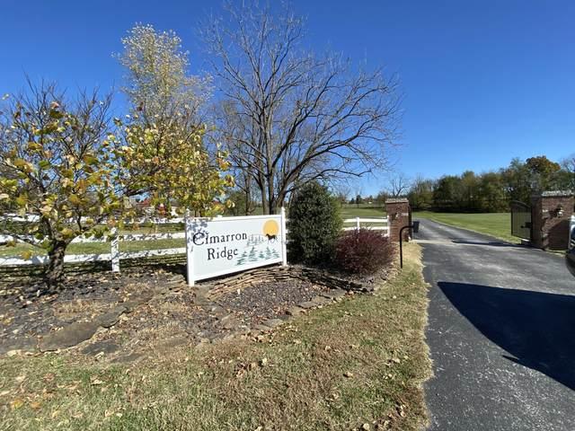 7385 E Cinnabar Lane, Strafford, MO 65757 (MLS #60178224) :: Winans - Lee Team | Keller Williams Tri-Lakes