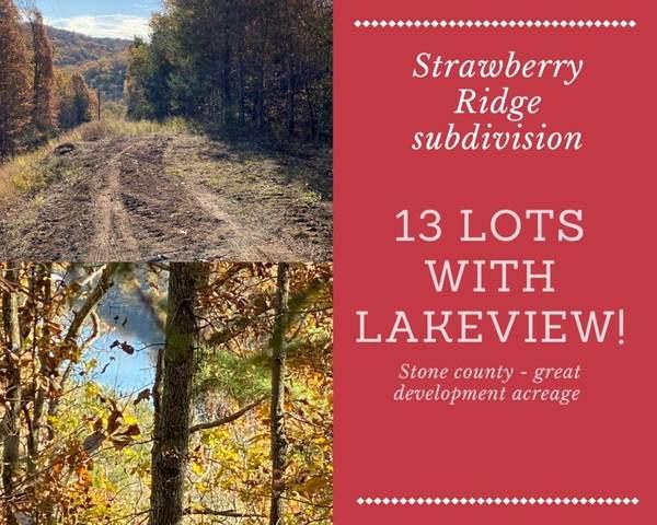 Lot 1 - 13 Strawberry Ridge Subdivision, Lampe, MO 65681 (MLS #60178358) :: Team Real Estate - Springfield
