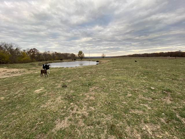4499 Gravel Point Road, Mountain Grove, MO 65711 (MLS #60178381) :: Sue Carter Real Estate Group
