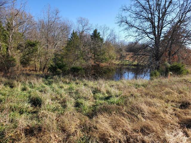 Tbd County Road 8470, West Plains, MO 65775 (MLS #60178474) :: Team Real Estate - Springfield